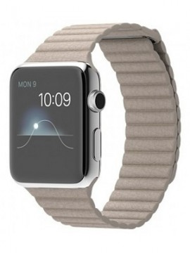 Apple Watch 42mm Stainless Steel Case with Stone Leather Loop (MJ432)